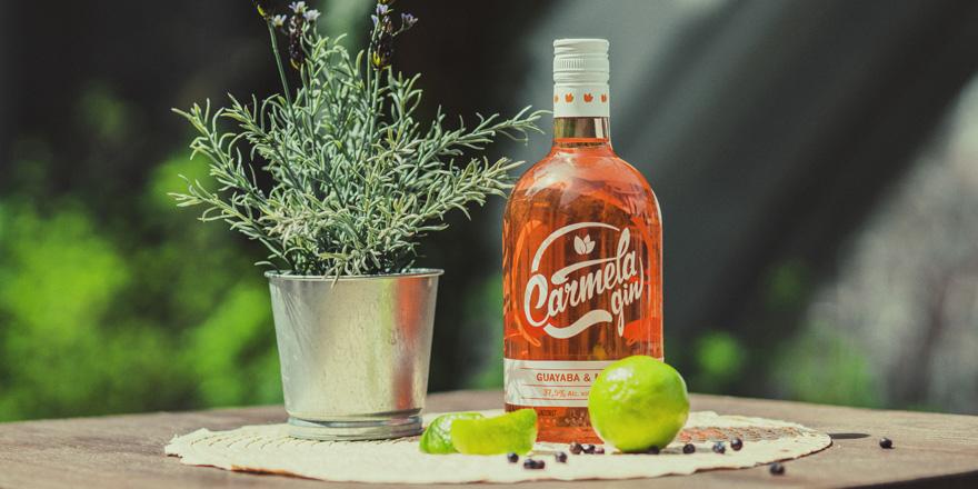 4 curiosidades de la ginebra by Carmela Gin